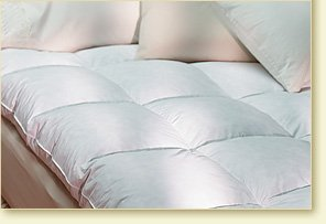Pacific Coast ® Baffle Box Feather Bed - Featured in Many Marriott ® Hotels (Twin 39'' x 75'')
