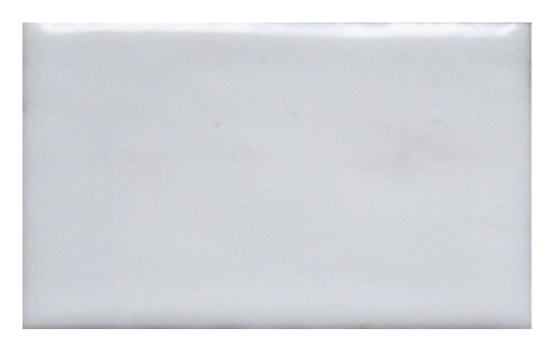 Thompson Enamel - Opaque Colors - 1 oz Jar, Lead Free Vitreous Enamel Powder (Foundation White 1030) (Powder Copper Foundation)