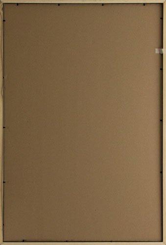 Economy Frames, 24 x 36'', Honey 2569 by Frame USA (Image #1)
