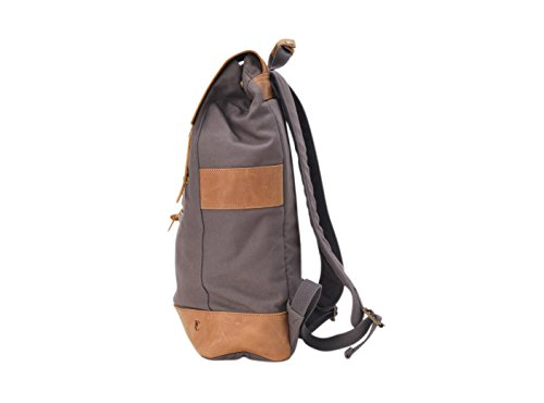 cm Daypack Forbes Black 49 amp; Casual Lewis Spring Grey 18 Summer CPUaqw