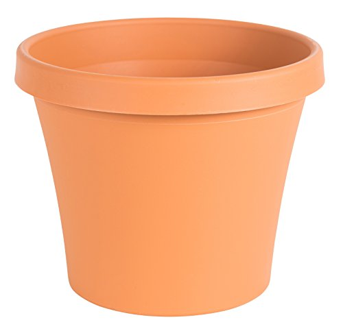 Fiskars 6 Inch TerraPot Planter, Color Clay (Terracotta Pot)