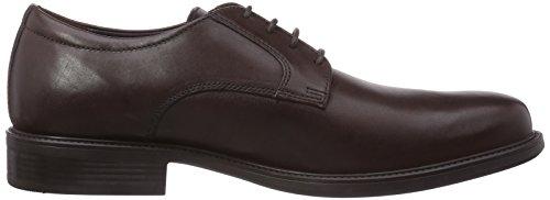 Geox UOMO CARNABY D - zapatos con cordones de cuero hombre marrón - Braun (DK BROWNC6006)