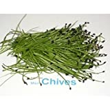 Micro Greens - Chives - 4 x 8 oz