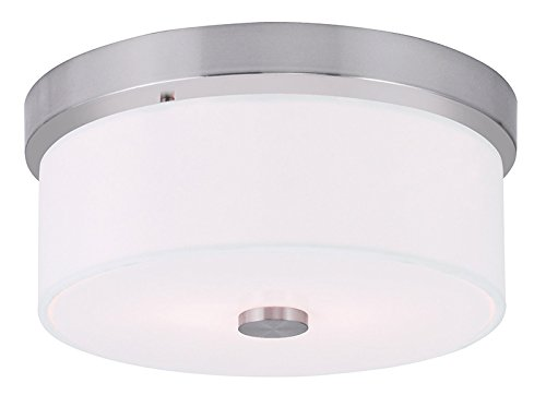 Amazon.com: livex iluminación 50862 Meridian 2 Light Flush ...