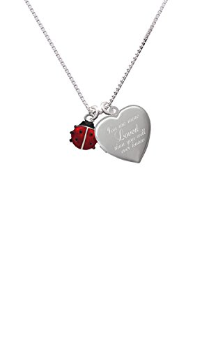 Mini Red Translucent Ladybug Custom Engraved You are more Loved Heart Locket Necklace