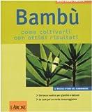 Image de Bambù. Come coltivarli con ottimi risultati
