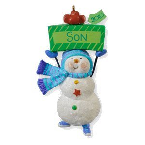 2010 Hallmark Ornament - One Fun Son 2010 Hallmark Keepsake Ornament Personalize