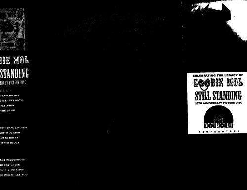 Still Standing  (2Lp/150G Vinyl/Picture Disc/Clear Plastic Gatefold) (Rsd)
