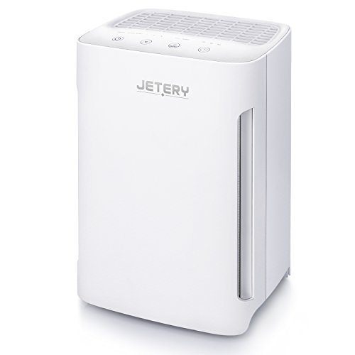 Air Purifier with True HEPA Filter, JETERY Air Cleaner for Allergies,...