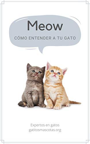 Entender a los Gatos: De A a Z. Expertos de los gatos, gatitosmascotas por Alejandro Stolte