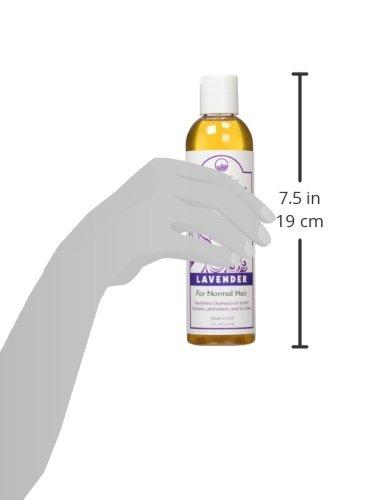The-Organic-Shampoo-All-Natural-Sulfate-SLS-Paraben-Free-Ayurvedic-Rare-Herbs-Lavender
