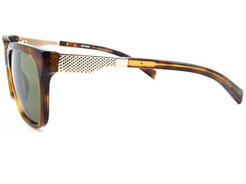 8205f5e53848ba Harley Davidson Lunettes de soleil Homme marron Brown Tortoise r8qHq ...