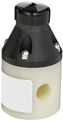 """Pulsafeeder NA200001-PVD PVDF Back Pressure Relief Valve, 15 GPM, 10-150 psi, 1/2"""" NPT by Pulsafeeder"""