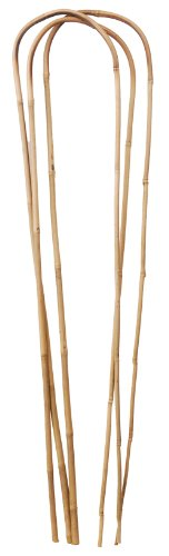 Bond Manufacturing U1024 100-Pack Bamboo U-Hoop for Plant Support, 24-Inch/9-11mm ()