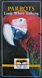 Nature: Parrots...Look Who's Talking [VHS]