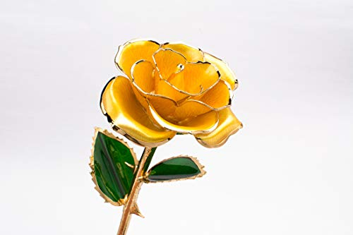 LWKBE Gold Dipped Roses 24K Gold Eternity Rose Forever Blooming Flowers Handmade Rose with Stand and Gift Box, Gift for Women Mother Wife Girlfriend Birthday Anniversary,Yellow ()