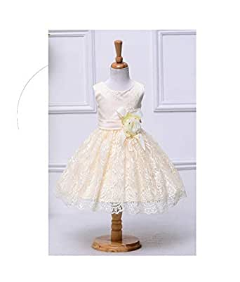 Aira Special Occasion Ball & Wedding Gown Dress For Girls