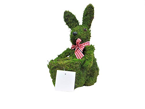 Easter Bow Tie Rabbit Moss Topiary Planter