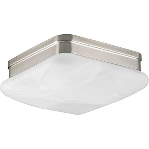 Progress Lighting P3490-09 2-Light Flush Mount with Etched Alabaster Glass Square Diffuser