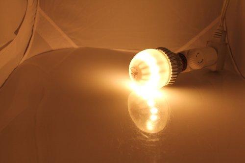 Liquid Led Lights - 8