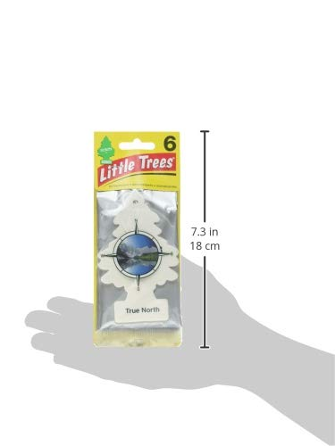 Little Trees Car Air Freshener 6-Pack (True North)
