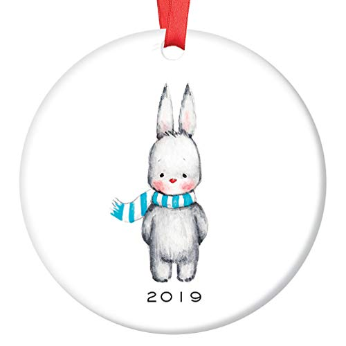 Baby Boy Bunny Christmas Ornament 2019 Adorable Infant Rabbit Ceramic Family Keepsake for Mommy & Daddy's Little Newborn Son Grandchild 1st Holiday 3