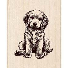 - Rubber Stamp w/Wood Handle: Baby Retriever Puppy Dog