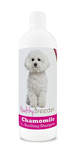 Healthy Breeds Chamomile Dog Shampoo & Conditioner with Oatmeal & Aloe for Bichon Frise  - OVER 200 BREEDS - 8 oz - Gentle for Dry Itchy Skin - Safe with Flea and Tick Topicals