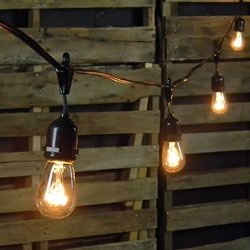 Commercial Edison Drop String Lights, 24 Clear Bulbs, 54 ft Black Wire