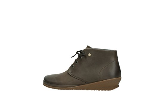 Zapatos Wolky Leather Lace Up CW Taupe Oiled comodidad nbsp;Sacramento 50150 07253 tqt7wrxS