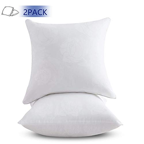 Emolli 24 x 24 Pillow Inserts Set of 2, Throw Pillow Inserts Premium Stuffer Down Alternative,Super Soft Microfiber Filled Decorative Pillow Cushion
