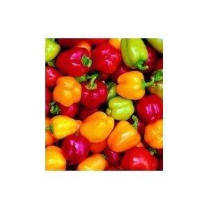 - Pepper Mini Belle Mix 40 Seeds