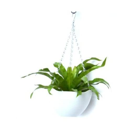 Kingbuy Hanging Flower Plant Indoor Outdoor Basket Flower Pot Chain Basket Planter Holder 1pcs-white