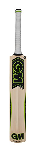 gunn-moore-paragon-f45-dxm-808-cricket-bat-short-handle-medium-weight