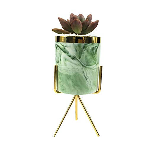 7.5-inch Modern Flower Pot Pink Ceramic Round Plant Pot with Metal Bracket,Mid-Century Small Indoor Plant Stand for/Succulents /Mini Cactus (Green + Gold) (LY336 Green)