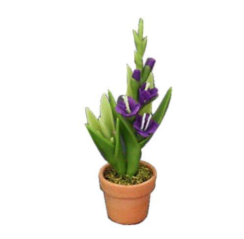 Gladiolus Violet Flower Pot Clay Dollhouse Miniature Handmade