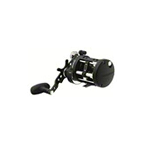 (Daiwa Saltist Level Wind Reel, STTLW20H-C)