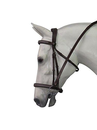 Henri de Rivel Pro Mono Crown Titanium Bridle