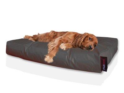 Vente de liquidation 2019 site professionnel qualité incroyable Dogstyle cuccia cuscino per cani, nylon 120 x 80 nero ...