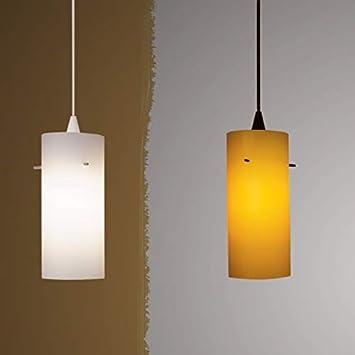 WAC Lighting PLD-F4-454LEDWT//WT Dax LED Monopoint Pendant White Shade with White Socket and Canopy