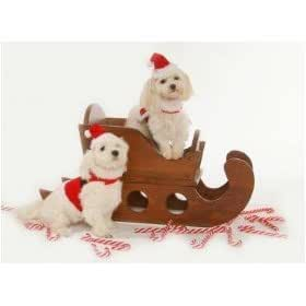 Dog Santa Suit - Santa Claus Santa Boy Harness Dog Christmas Outfit w/ Matching Hat & Leash - Large