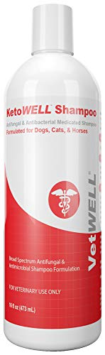 KetoWELL Ketoconazole & Chlorhexidine Shampoo for Dogs & Cats - Antifungal & Antiseptic Medicated Dog Shampoo for Hot Spots, Ringworm, Yeast, Fungal Infections, Acne & Pyoderma