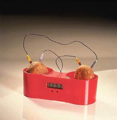 470006-220EA - Description : Two Potato Clock - Fruit and Potato Clock - Each