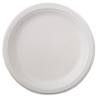 (Classic Paper Plates, 9 3/4 Inches, White, Round, 125/Pack)