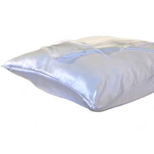 Silk Charmeuse Pillow Protector Ivory - Queen