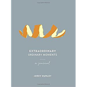 Extraordinary Ordinary Moments: A Journal
