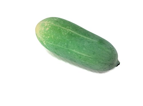 Cucumber Vegetable Green Fake Food Fruit Artificial Lifelike Simulation Faux Fake Fruit Fake Vegetable