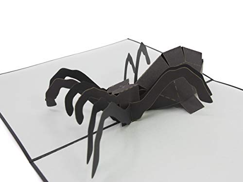 - PopLife Spider Spooky Pop Up Card, 3D cards - Creepy, Crawly Birthday Surprises