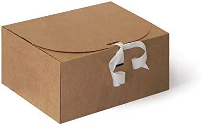 Caja de Cartón 25 x 20 x 12 cm CTM11 Pack 10 uds: Amazon.es ...