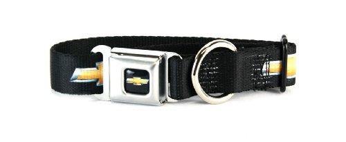 chevy black gold dog collar